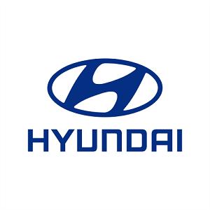 Hyundai Ladekabel